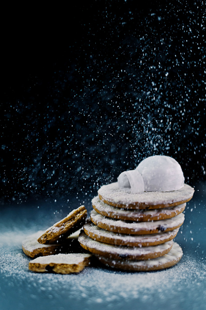 igloo_powdered_sugar_dinabelenkoart