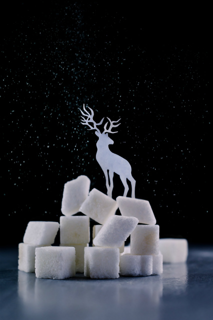 reindeer_powdered_sugar_dinabelenkoart