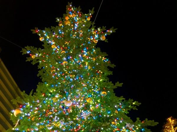 イルミネーションが驚くほどキレイに撮れる♡ 暗い場所での撮影で使える優秀アプリ「夜撮カメラ」♡
