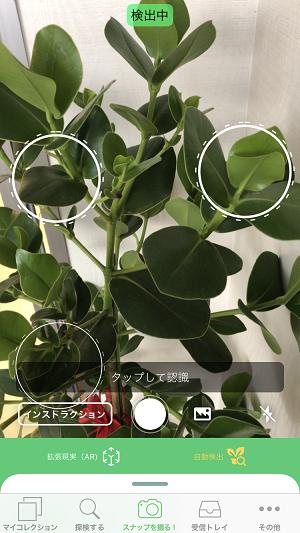 花 の 名前 アプリ android 無料