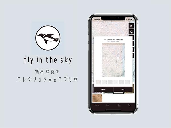 美的センスが試される?衛星写真を見てコレクションするアプリ「fly in the sky」が楽しい♡