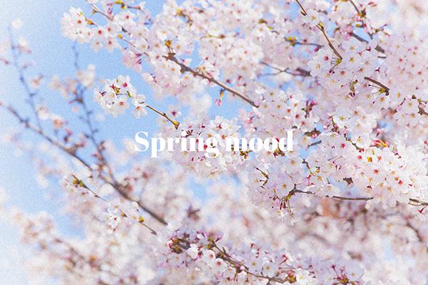 「SNOW」の新スタンプはもう試した?話題の新元号「令和」スタンプや桜スタンプで春っぽく写真が盛れそう♡