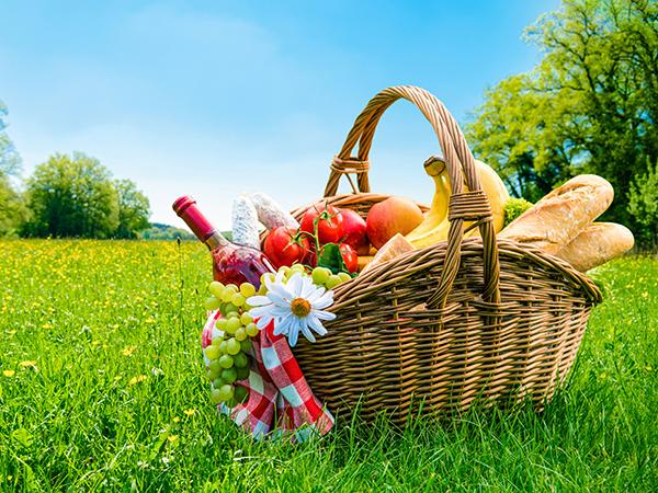 今日は1日のんびりしよっと。公園や庭園など屋外でゆったり過ごしたい日に使える都立公園ナビアプリ