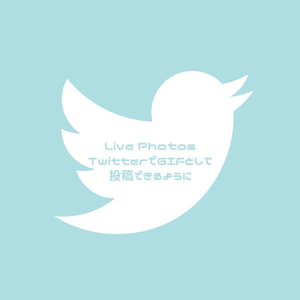 【Twitter】撮影したLIve PhotosがGIF画像としてツイートできるようになりました♡