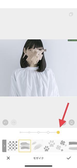 顔隠す 動画 インスタ
