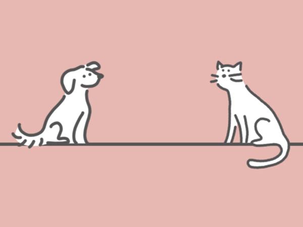 ペットを探している人におすすめ。運命の子が保護犬猫マッチングサイト「OMUSUBI」で見つかる予感♡