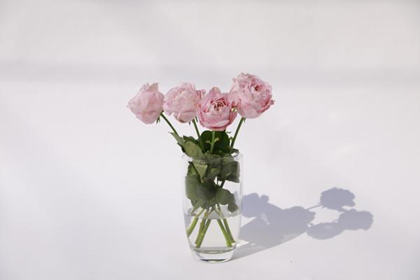 """""""フラワーロス""""削減を目指すオンライン限定のお花屋さん「from somewhere flowers」がオープン♩"""