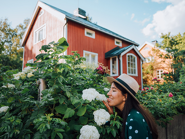 幸福度ランキング1位、フィンランドのライフスタイルをバーチャル体験できるオンラインプログラムがスタート♩