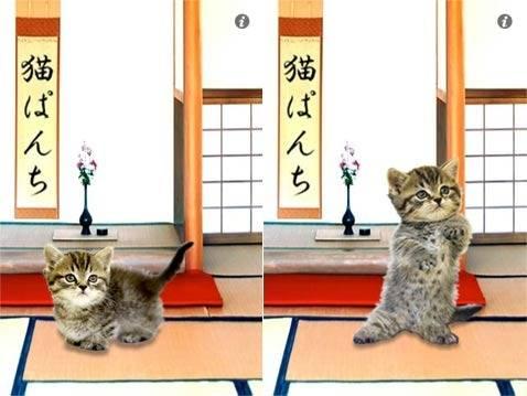 踊って!猫ぱんち