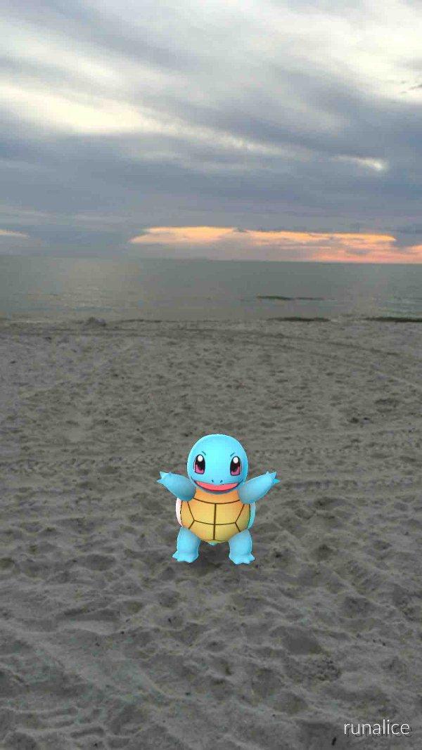 Pokemon Go Snap
