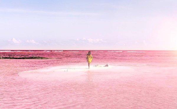 死ぬまでに行きたい絶景☆メキシコの「ピンクラグーン」が美しすぎる! - isuta[イスタ] - おしゃれ、かわいい、しあわせ -