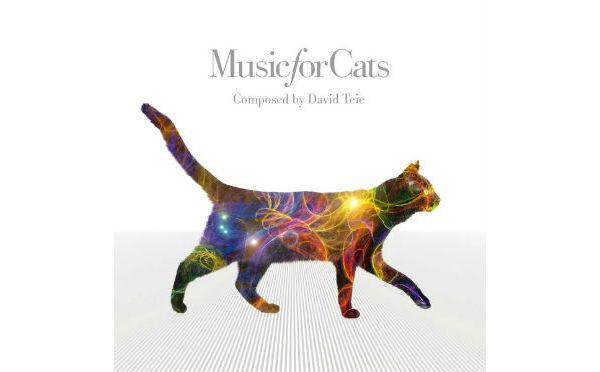 猫好きさんは要チェック!イギリスで話題沸騰の「ねこのための音楽」がついに日本上陸