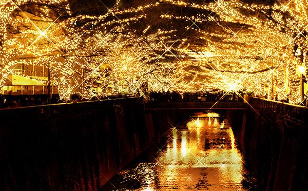 クリスマスデートにぴったり♡東京のおすすめイルミネーション10選