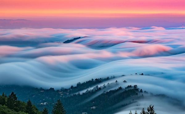 """これぞ""""地上の天国""""…!雲海のような霧が自然を包み込むフォト作品が幻想的"""