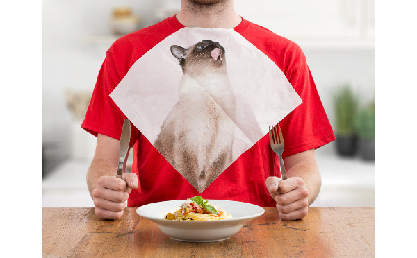 cat napkins