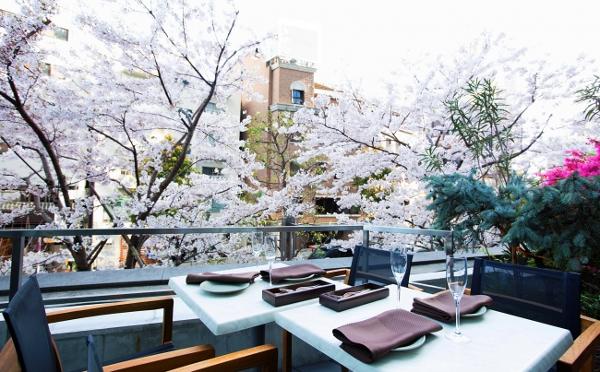 都心にいながらゆったりお花見♡人込みを気にせず桜が楽しめる東京のレストラン&バー8選