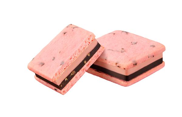 サブレショコラ_桜-ホワイト&ダークチョコレート