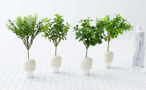 出しっぱなしでも問題ナシ☆水まわり掃除がラクになる観葉植物みたいな「お掃除ブラシ」が登場!