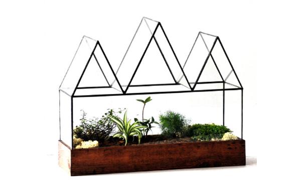 お部屋が植物園に♪温室感覚で楽しめるテラリウムがステキ