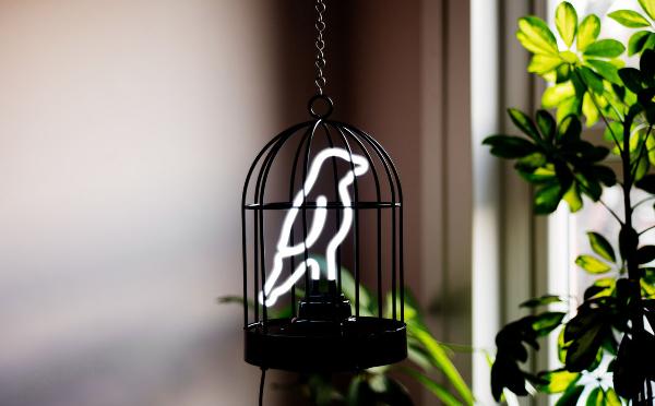 ペットを飼ってるみたい♩鳥かごにはいった小鳥のネオンサイン風照明がかわいい♡
