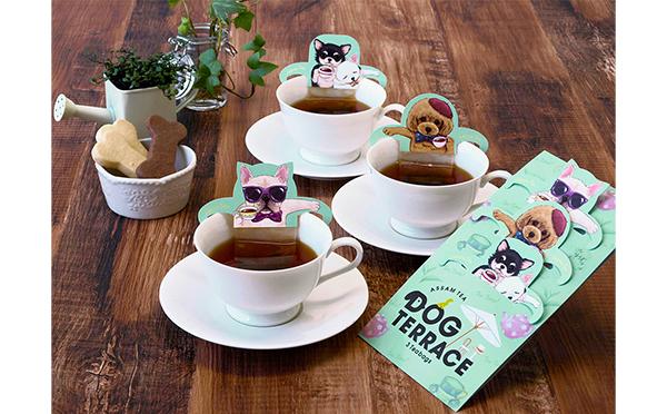 DOG-TERRACE_yoko2