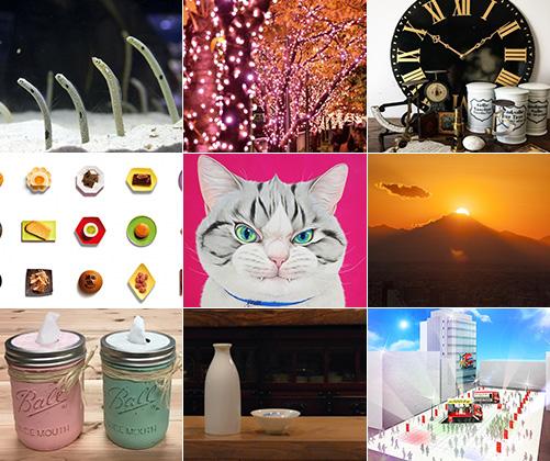 今週末のおすすめ東京イベント10選(11月11日~11月12日)
