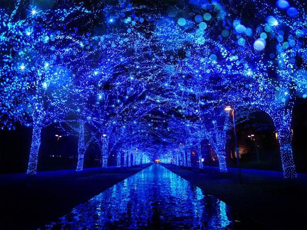 今週末のおすすめ東京イベント10選(11月25日~11月26日)