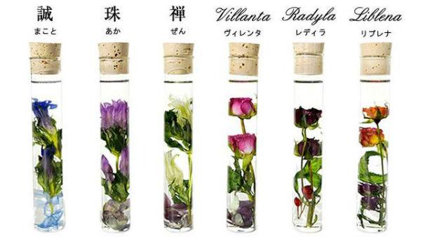 お花を丸ごと閉じ込めた癒しのインテリア♪バラ職人が手がける「ハーバリウム」にうっとり♡