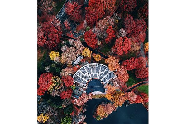 上空から見てもフォトジェニック♡ドローンで撮影したニューヨークの街がカラフルで美しい