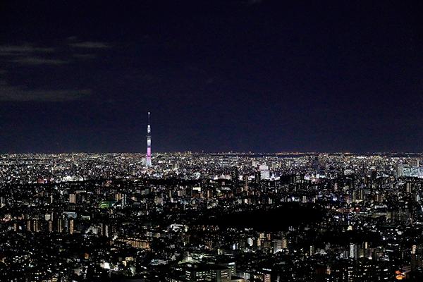 今週末のおすすめ東京イベント10選(12月30日~12月31日)