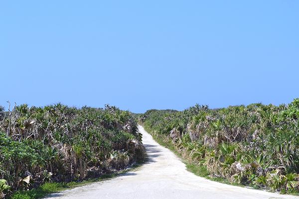 真冬でもあたたかい沖縄へ女子旅! 写真におさめたくなる観光スポットを8つご紹介♡