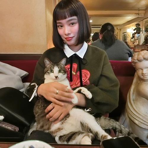 看板猫と触れ合えちゃうカフェも♩おしゃれ女子のおすすめカフェ教えます♡~植村麻由編~