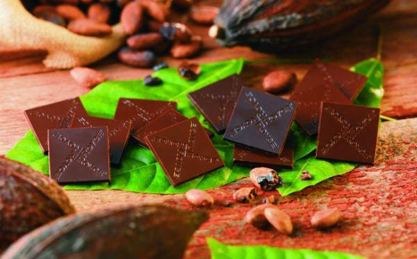 産地別4種のフレーバーを食べ比べ!ロイズにカカオ70%の「オリジンチョコ」が登場♡