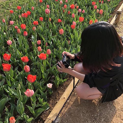 女の子の憧れスポット♡日帰り旅行にぴったりな、GWに行きたい関東のおすすめお花畑4つ