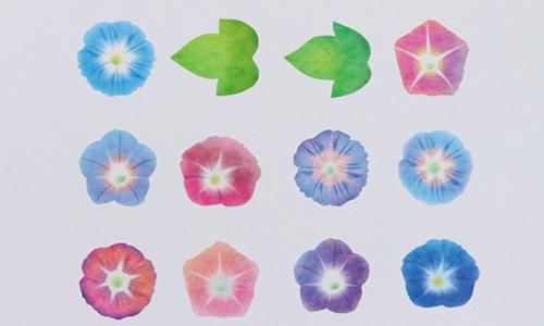 """ヴィレヴァンオンラインで人気の1枚ずつめくれるマステ♡新作の""""貝殻""""&""""朝顔""""が夏らしくてかわいい"""