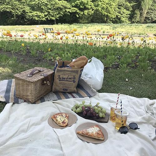 天気が良い日はピクニックしよう♡ 最新おしゃピクに必要な5つのアイテム