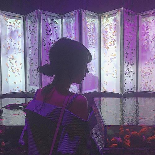 """今夏、絶対行きたい場所はココ。見ているだけで""""涼""""を感じる金魚×アートの空間、集めました♡"""