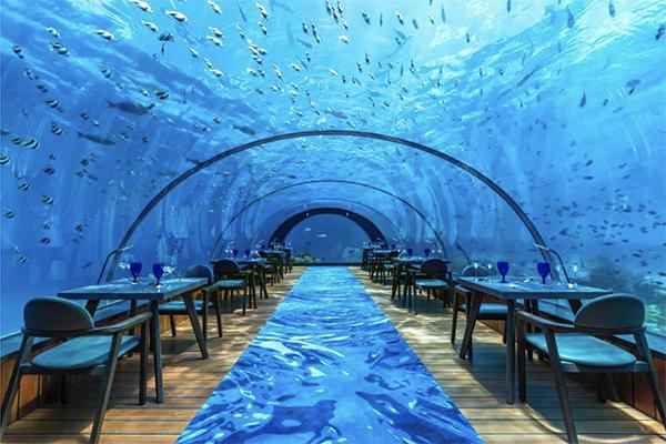 全面ガラス張りの海底レストランでヨガや瞑想も…!モルディブの大人専用リゾートホテルに泊まってみたい