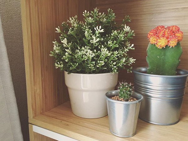 白×茶色でシンプルなお部屋♡isuta GIRLの外川礼子ちゃんにこだわりのライフスタイルについて聞きました!