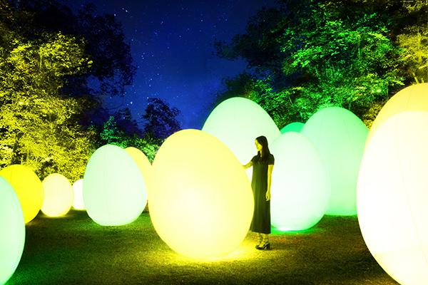 埼玉県飯能市の「チームラボ 森と湖の光の祭」
