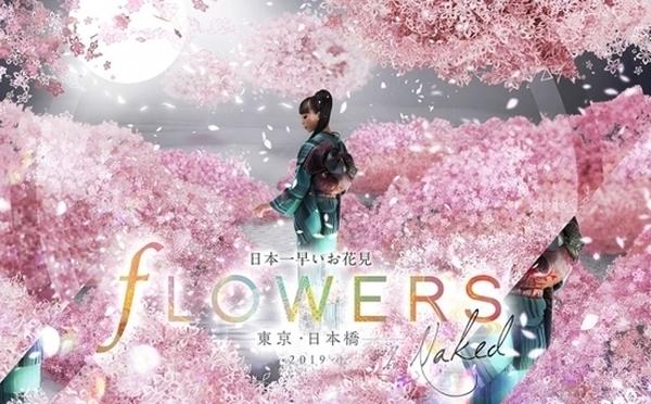 桜に包まれるイマーシブ空間がステキ♡ネイキッドの「日本一早いお花見」が日本橋で開催!