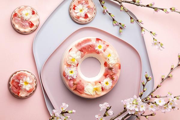 春のご褒美スイーツに選びたい!「花のババロアhavaro」の桜の花を閉じこめた春限定スイーツに一目惚れ♡