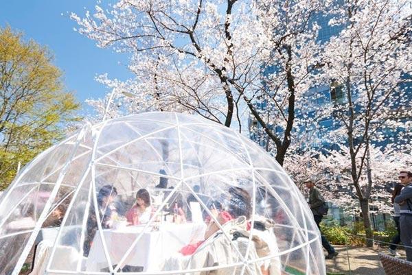 今週末のおすすめ東京イベント10選(3月16日~3月17日)