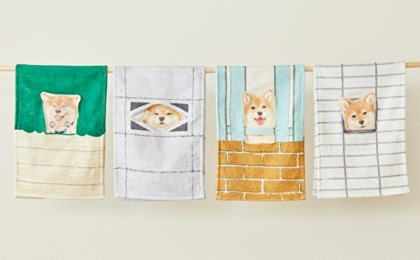 すき間から見つめる姿にキュン♡フェリシモの「柴犬タオル」は柴犬ラバーマストチェックのかわいさ♩