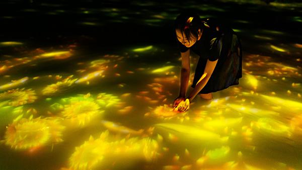 豊洲の「チームラボプラネッツ」がオープン1周年!水面を泳ぐ鯉たちが向日葵に変化する夏の作品を体験したい♡