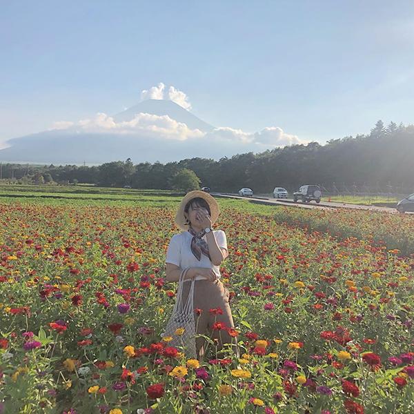 【まだ間に合う】いま訪れたい日本全国のお花畑をピックアップ。花畑×富士山の絶景スポットも