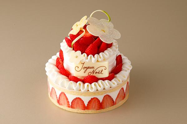 苺ぎっしりのココットや王道ショートケーキもいいなぁ♡今年は資生堂パーラーのクリスマスケーキで決まりかも