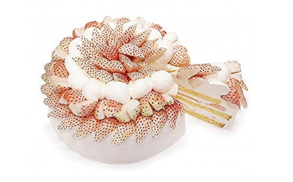 希少な白いちごのケーキは見逃せない!カフェコムサ「ショートケーキの日」限定アイテム、1月は2種類がお目見え♩