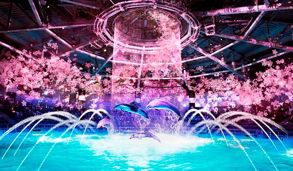 デジタルアートの桜で彩られる海の世界に感動しそう。「マクセル アクアパーク品川」で春のイベントが開催
