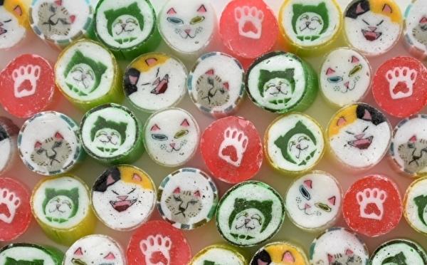肉球&マタタビフレーバーってどんな味?パパブブレの「ねこの日」キャンディは驚きがいっぱいのラインナップ!